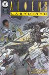 Cover for Aliens: Labyrinth (Dark Horse, 1993 series) #2