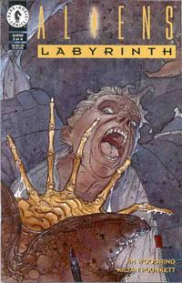 Cover Thumbnail for Aliens: Labyrinth (Dark Horse, 1993 series) #3