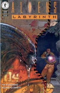 Cover Thumbnail for Aliens: Labyrinth (Dark Horse, 1993 series) #4