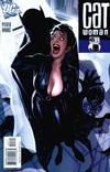 Cover for Catwoman (DC, 2002 series) #45
