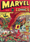 Cover for Marvel Mystery Comics (Marvel, 1939 series) #23