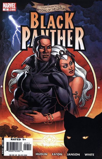 Cover for Black Panther (Marvel, 2005 series) #17 [Direct Edition]