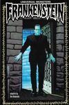 Cover for Universal Monsters: Frankenstein (Dark Horse, 1993 series) #[nn]