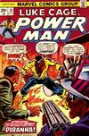 Cover for Power Man (Marvel, 1974 series) #30