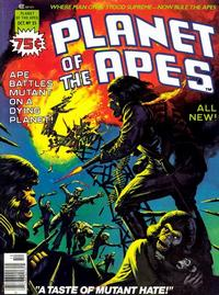 Cover Thumbnail for Planet of the Apes (Marvel, 1974 series) #25