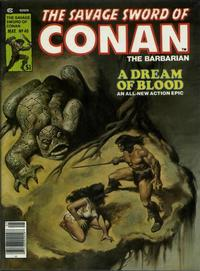 Cover for The Savage Sword of Conan (Marvel, 1974 series) #40