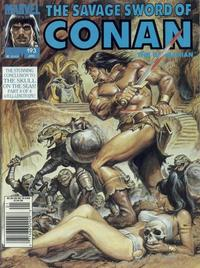 Cover Thumbnail for The Savage Sword of Conan (Marvel, 1974 series) #193