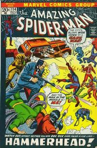 Cover Thumbnail for The Amazing Spider-Man (Marvel, 1963 series) #114 [Regular Edition]