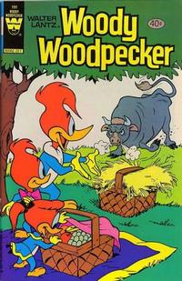Cover Thumbnail for Walter Lantz Woody Woodpecker (Western, 1962 series) #191