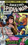 Cover for The Amazing Spider-Man (Marvel, 1963 series) #178