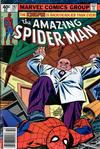 Cover for The Amazing Spider-Man (Marvel, 1963 series) #197 [Newsstand]