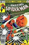 Cover Thumbnail for The Amazing Spider-Man (1963 series) #244 [Newsstand]