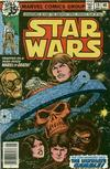 Cover for Star Wars (Marvel, 1977 series) #19