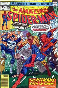 Cover Thumbnail for The Amazing Spider-Man (Marvel, 1963 series) #174 [Regular Edition]