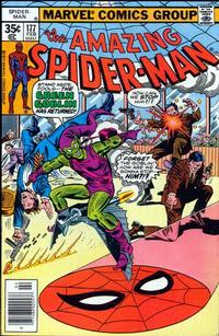 Cover Thumbnail for The Amazing Spider-Man (Marvel, 1963 series) #177