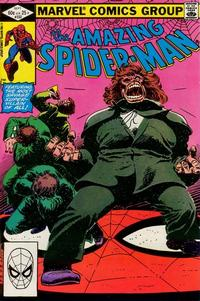 Cover Thumbnail for The Amazing Spider-Man (Marvel, 1963 series) #232 [Direct Edition]