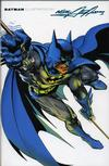 Cover for Batman Illustrated by Neal Adams (DC, 2003 series) #2