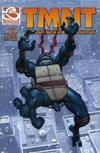 Cover for TMNT: Teenage Mutant Ninja Turtles (Mirage, 2001 series) #2