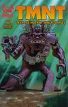 Cover for TMNT: Teenage Mutant Ninja Turtles (Mirage, 2001 series) #13