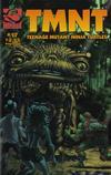 Cover for TMNT: Teenage Mutant Ninja Turtles (Mirage, 2001 series) #17