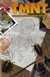 Cover for TMNT: Teenage Mutant Ninja Turtles (Mirage, 2001 series) #22