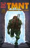 Cover for TMNT: Teenage Mutant Ninja Turtles (Mirage, 2001 series) #25