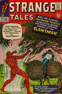 Cover Thumbnail for Strange Tales (Marvel, 1951 series) #113