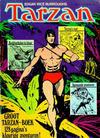 Cover for Groot Tarzan-boek (Classics/Williams, 1971 series) #2