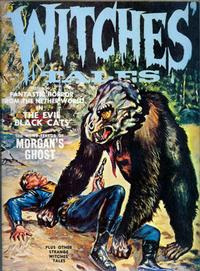 Cover Thumbnail for Witches Tales (Eerie Publications, 1969 series) #v3#2