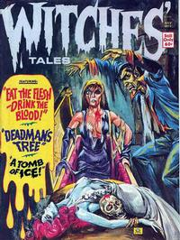 Cover Thumbnail for Witches Tales (Eerie Publications, 1969 series) #v5#6