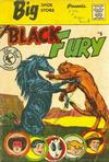 Cover Thumbnail for Black Fury (1959 series) #9 [Big Shoe Store]