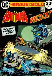 Cover Thumbnail for The Brave and the Bold (DC, 1955 series) #110