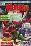 Cover for Werewolf by Night (Marvel, 1972 series) #19