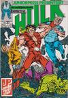 Cover for De verbijsterende Hulk Special (JuniorPress, 1983 series) #21