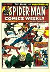 Cover for Spider-Man Comics Weekly (Marvel UK, 1973 series) #21