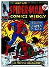Cover for Spider-Man Comics Weekly (Marvel UK, 1973 series) #34