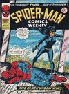 Cover for Spider-Man Comics Weekly (Marvel UK, 1973 series) #110