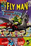 Cover for Fly Man (Archie, 1965 series) #35