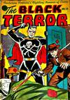 Cover for The Black Terror (Pines, 1942 series) #19