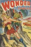 Cover for Wonder Comics (Pines, 1944 series) #19