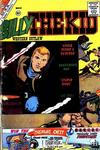 Cover for Billy the Kid (Charlton, 1957 series) #27