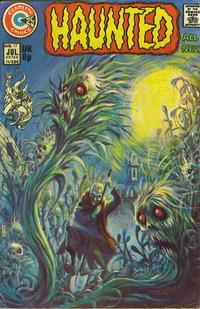 Cover Thumbnail for Haunted (Charlton, 1971 series) #17