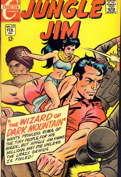 Cover for Jungle Jim (Charlton, 1969 series) #22