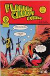 Cover for Flaming Carrot Comics (Dark Horse, 1988 series) #21