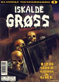Cover Thumbnail for Iskalde Grøss pocket (Semic, 1996 series) #1