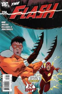 Cover Thumbnail for The Flash (DC, 2007 series) #234
