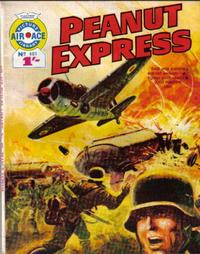 Cover Thumbnail for Air Ace Picture Library (IPC, 1960 series) #401