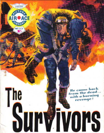 Cover for Air Ace Picture Library (IPC, 1960 series) #113