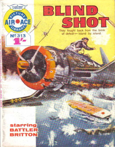 Cover for Air Ace Picture Library (IPC, 1960 series) #313