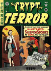 Cover for The Crypt of Terror (EC, 1950 series) #17